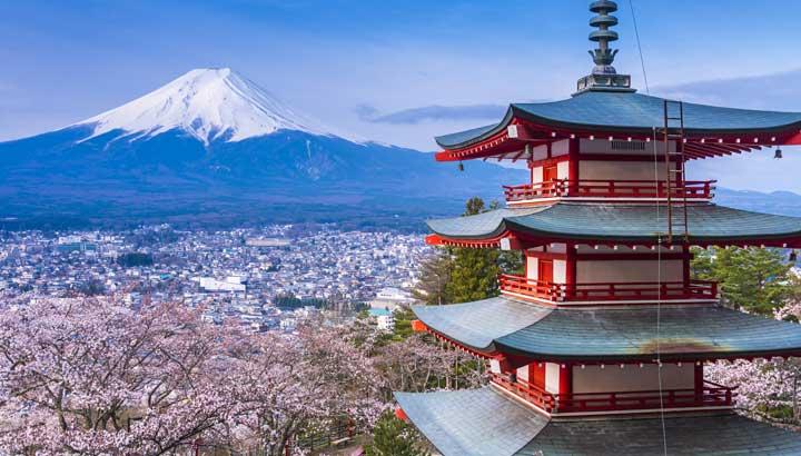 http://www.tourmag.com/docs/emploi/shizuoka_fuji_sakura_101016.jpg