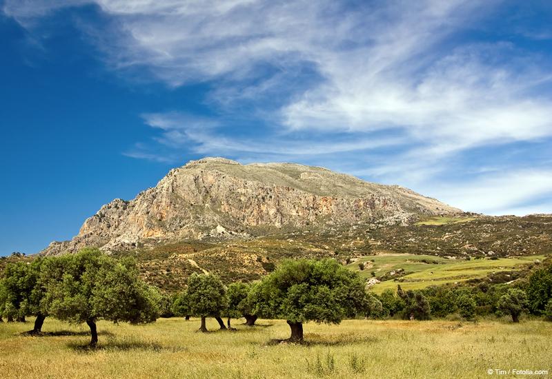 http://www.tourmag.com/docs/emploi/voyage-grece-crete-2.jpg