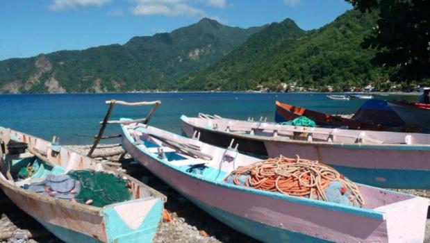 L'agence TQC a pour mission de développer la notoriété de la Dominique sur le marché français - Photo : Discover Dominica Authority