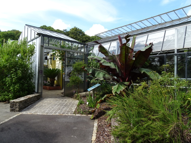 Tropical greenhouses at the National Botanic Conservatory of Brest (photo: CNB de Brest)