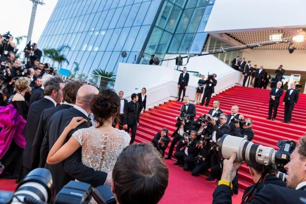 Le Festival de Cannes et son célèbre tapis rouge. Photo Hervé Fabre.