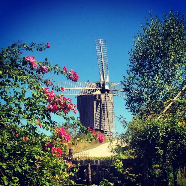 Dosches windmill (photo: SHD)