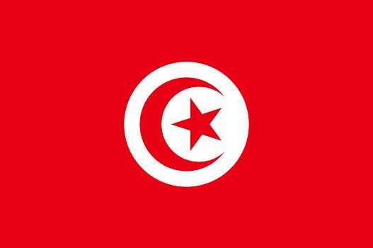 L'ONTT souhaite aider les agents de voyages français à mieux vendre la Tunisie - DR : Wikipedia