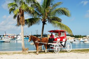 Le point sur les dommages après le passage de Matthew aux Bahamas - DR