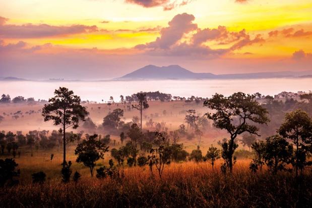 L'Afrique du Sud destination phare d'Afrique Authentique - Photo Afrique Authentique