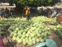 Au marché de Touba Nding - DR : J.-P.C.