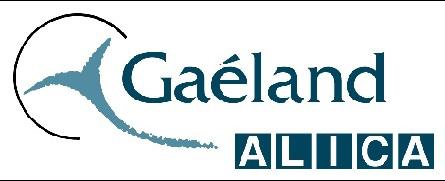 Gaeland Alica : Madagascar en nouveauté de la production Alizés