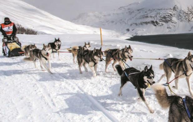 La Grande Odyssée Savoir Mont Blanc @Vincent Piccerelle