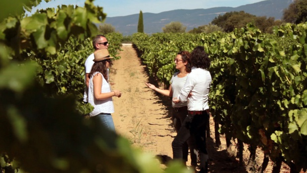 DR Provence Wine Tours