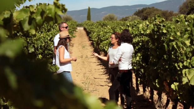DR Provence Wine Tours