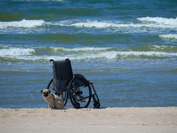 Le manque de contrôle limite l'efficacité de la réglementation qui s'applique à l'organisation de séjours pour personnes en situation de handicap - Photo : photoniko-Fotolia.com