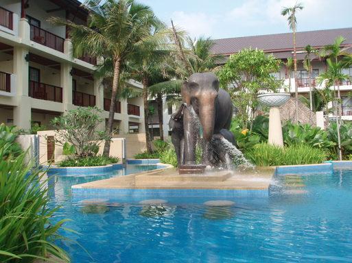 La piscine paysagée s'intègre parfaitement dans le jardin tropical