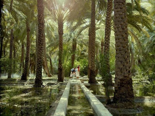 L'oasis Al Ain, le berceau de la culture bédouine, inscrite au patrimoine mondial de l'Humanité - Photo : TCA