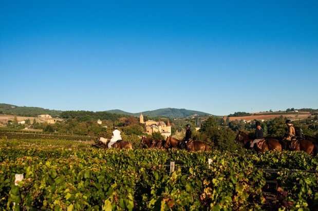 2 millions de visiteurs pratiquent le tourisme équestre en France. Le secteur connaît à nouveau un boom - DR : Cheval Passion