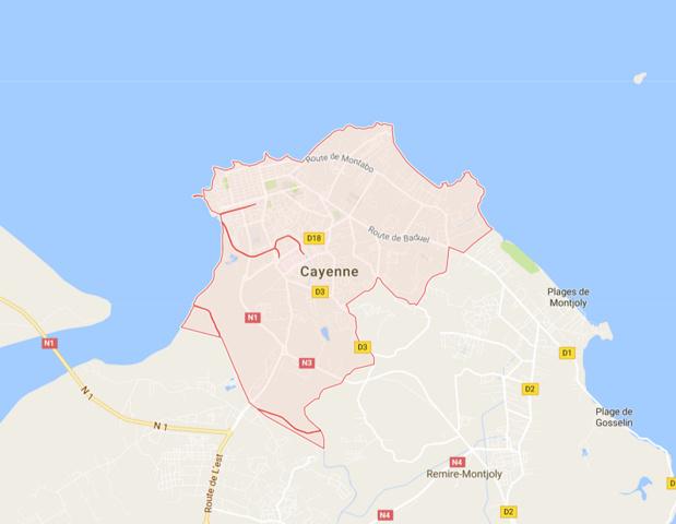 Air France et Air Caraïbes annulent leur vol - Copie écran MAP