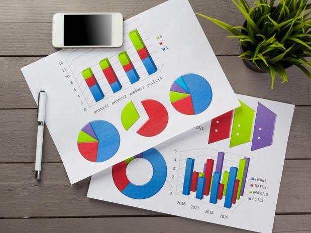 Nous avons pu consulter toutes les statistiques de ventes individuelles de FRAm pour les 11 premières semaines de l'année 2017 - DR : fotofabrika-Fotolia.com