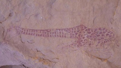 Peinture d'une girafe datant de plus de 6 000 ans