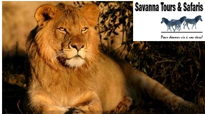 SAVANNA TOURS ET SAFARIS
