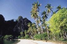 Phuket à elle seule a attiré 2,75 millions de touristes et engrangé deux milliards de dollars de rentrées