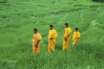 Les clients ont jusqu'au 13 mars pour profiter de la promotion des TO vers le Sri Lanka