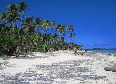 Antilles : les TO estiment le manque à gagner à 80M€