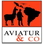 AVIATUR & CO