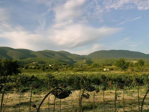 Pour qui sait s'éloigner des bourgs trop fréquentés, le Luberon est un pur bonheur d'itinérance sudiste - DR : J.F.-R.