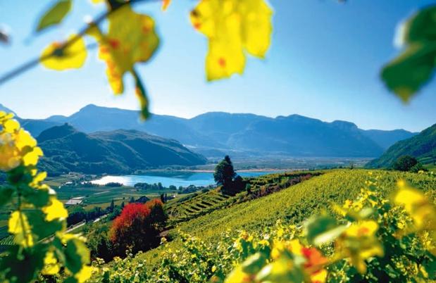 Lac de Caldaro : ©IDM Südtirol_C.Zahn