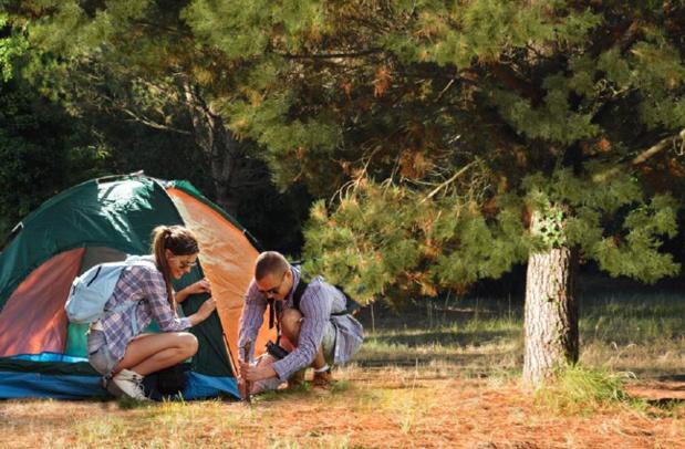 Le camping Azuréva Oléron, 3 étoiles, comptera 77 emplacements - Photo : Azuréva