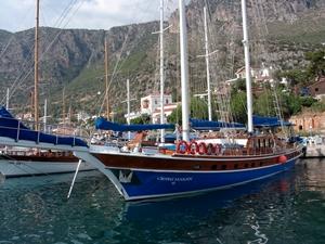 II - ''Saison de la Turquie'' : l'un des meilleurs rapports qualité-prix du moment