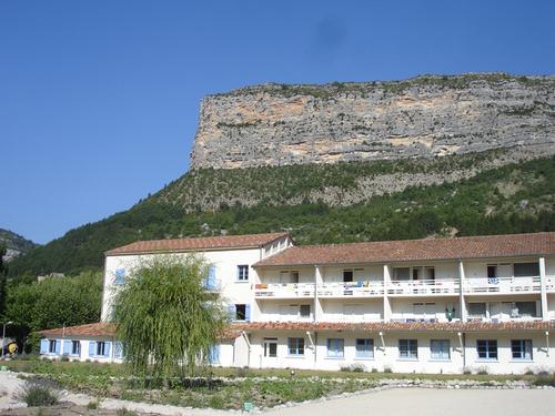 Les Lavandes à Rémuzat devant la falaise aux vautours