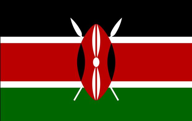 Drapeau du Kenya - DR : Wikipedia