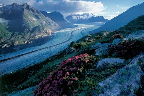 Le glacier d'Aletsch, inscrit à l'Unesco
