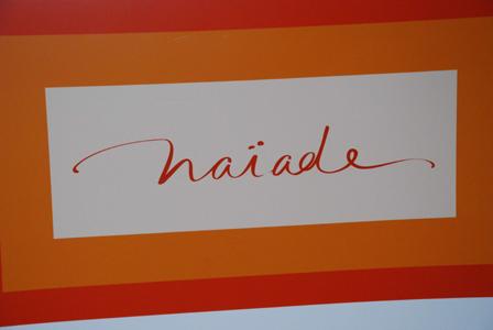 Hôtels Naïade : Des innovations pour contrer la baisse des revenus