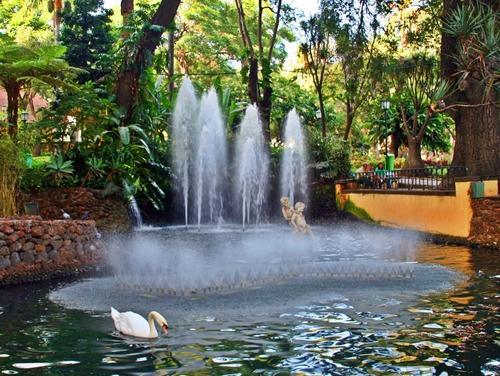 Pour la 3e année consécutive Top of Travel affrète pratiquement toute l'année sur Madère. (Cliquer pour voir les brochuresenligne.com)