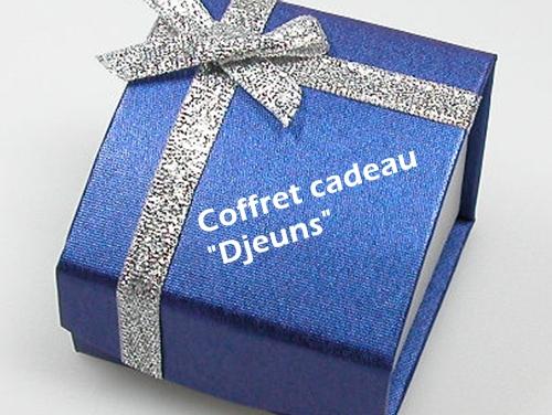 Le coffret-cadeau proposera aux 18/25 ans une formule « tout compris » incluant, par exemple, le transport en train, 2 nuits avec ½ pension et une activité récréative, le tout pour moins de 250 euros