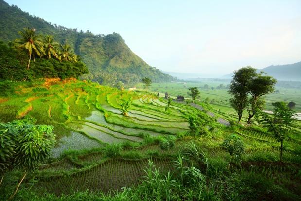 Bali Seken vous invite à découvrir l'Indonésie dans toute son authenticité. DR: Bali Seken