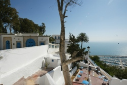 COSTA GROUP TUNISIE