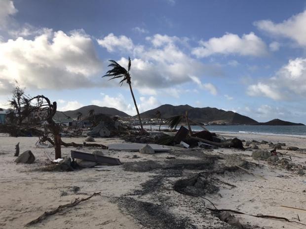 Une plage de Saint-Martin dévastée par le passage de l'ouragan Irma - Crédit photo : compte Twitter @xavieryvon