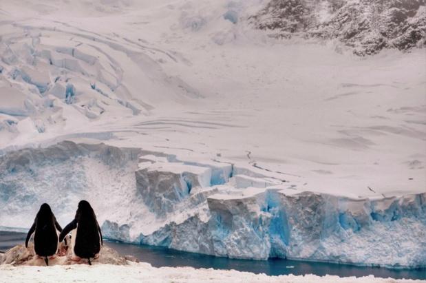 Découvrez les régions polaires avec Quark Expeditions. Croisières bilingues anglais/français. Photo: Quark Expeditions