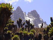 L'ecotourisme - ici Mont Kenya - est une des ressources à explorer pour la destination.
