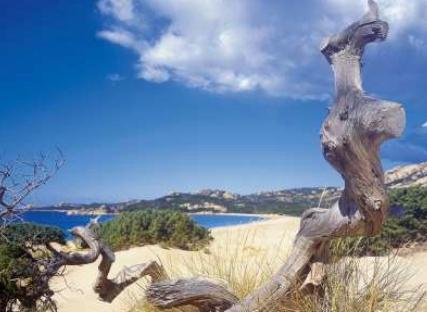 La superbe plage du Domaine de Murtoli, situé à Sartène (Corse du sud)