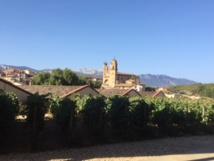 Les vignes de la Rioja - DR : J.-P.C.
