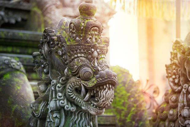 Bali Seken met son nouveau site B2B en ligne