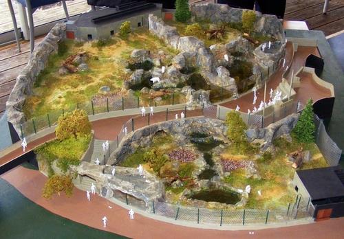 Le site sera clôturé et les bassins seront dotés de parois transparentes pour voir évoluer les ours.  Venus du zoo de Nuremberg, Rasputin et Flocke bénéficient du programme européen de conservation de l'espèce