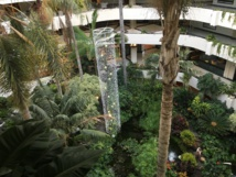 Jardin intérieur de l'hôtel Melia Salinas 4* imaginé par l'artiste © TourMaG