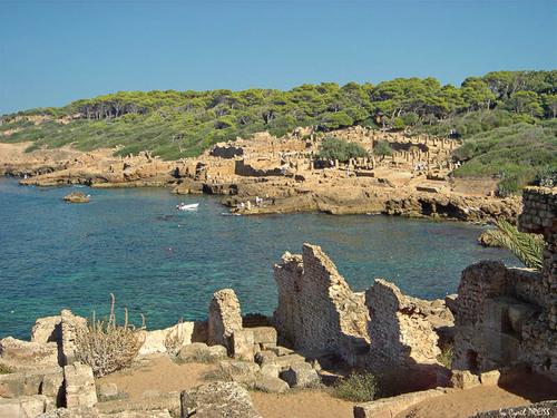 Tipaza : l'Algérie recèle un extraordinaire patrimoine antique, véritable musée à ciel ouvert réparti sur le littoral algérien et dans l'arrière-pays