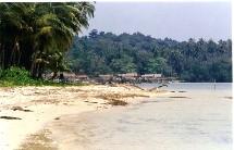 Les zones affectées par le tsunami n'ont pas la cote
