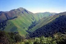 La montagne est le coup de coeur destination cet été avec plus de 45% des réservation et une augmentation de 15% selon Voyages-Sncf.com.