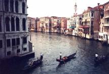Venise sert de cadre prestigieux pour la 62e fois la Mostra de Venise.